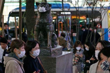 【マスク】渋谷マスク入荷!#マスク買えたツイートまとめ!
