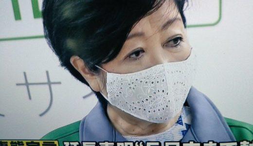 小池百合子都知事の大きめマスクが大人気!レースやガーランドが人気! みんなの手作りマスクをご紹介!