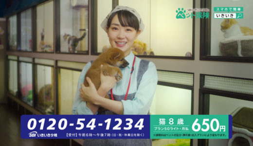 SBIいきいき少短ペット保険のCMの女優は誰??「あな番」で注目の奈緒の中学高校時代を調べてみた。