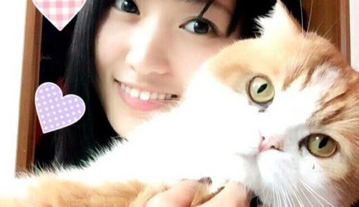 顔だけ総選挙2020優勝候補は菅井友香 姉も超美人?