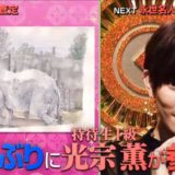 プレバト出演!光宗薫の絵の実力が神級!ボールペン画や水彩画など画家としての才能が凄かった!